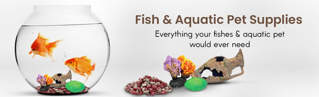 Fish & Aquatic Pet Supplies