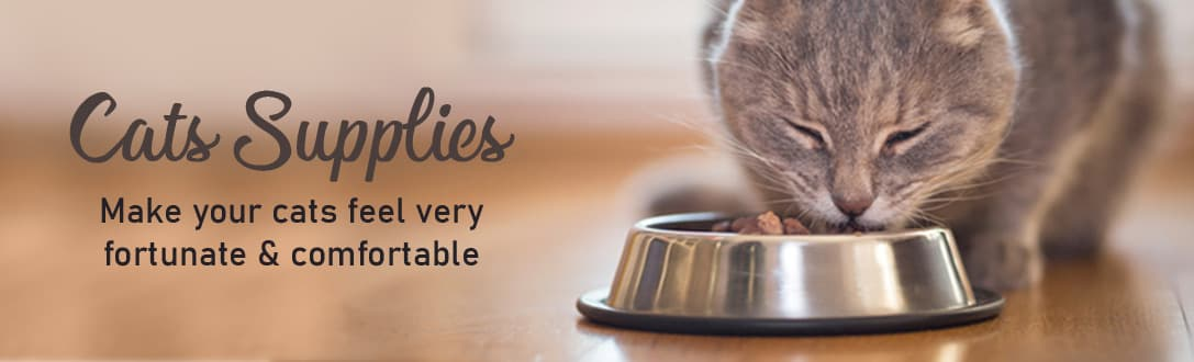 Cats Supplies